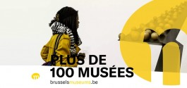 Le site brusselsmuseums.be récompensé
