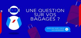 """Louis"", le chatbot d'Air France spécial bagages"